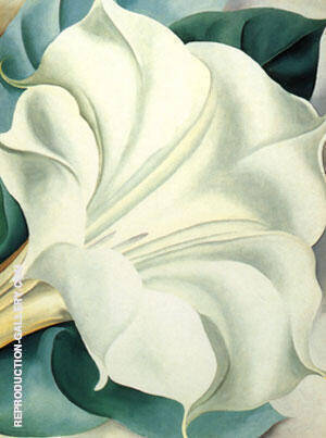 White Trumpet Flower 1932 By Georgia O'Keeffe - Oil Paintings & Art Reproductions - Reproduction Gallery