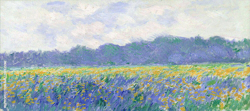 Champ d'iris Jaunes a Giverny By Claude Monet