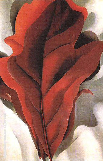 Large Dark Red Leaves on White 1925 By Georgia O'Keeffe