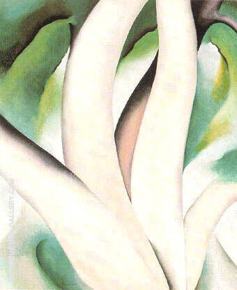 Birch Trees at Dawn on Lake George 1926 By Georgia O'Keeffe