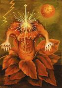 Flower of Life 1943 By Frida Kahlo