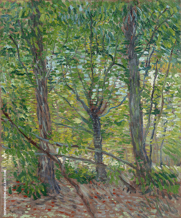 Trees and Undergrowth Painting By Vincent van Gogh - Reproduction Gallery