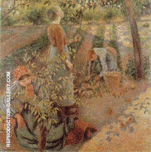 Apple Picking 1886 Painting By Camille Pissarro - Reproduction Gallery