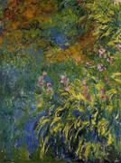 Irises c1917 By Claude Monet