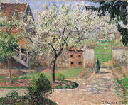 Plum Trees in Bloom Eragny By Camille Pissarro