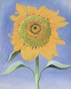 Sunflower, New Mexico By Georgia O'Keeffe