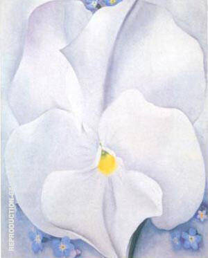 White Pansy 1927 By Georgia O'Keeffe - Oil Paintings & Art Reproductions - Reproduction Gallery
