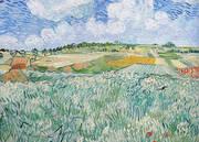 Plain Near Auvers 1890 By Vincent van Gogh