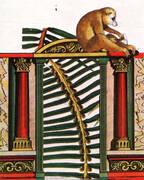 Frontispiece By Max Ernst