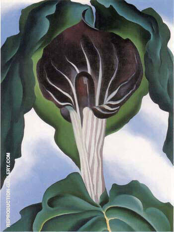 Jack in the Pulpit 3 By Georgia O'Keeffe - Oil Paintings & Art Reproductions - Reproduction Gallery