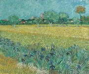View of Arles with Irises Near Arles 1888 By Vincent van Gogh