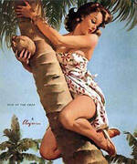 Pick of the Crop 1964 By Pin Ups