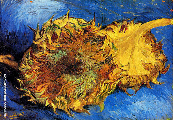 Two Cut Sunflowers Painting By Vincent van Gogh - Reproduction Gallery
