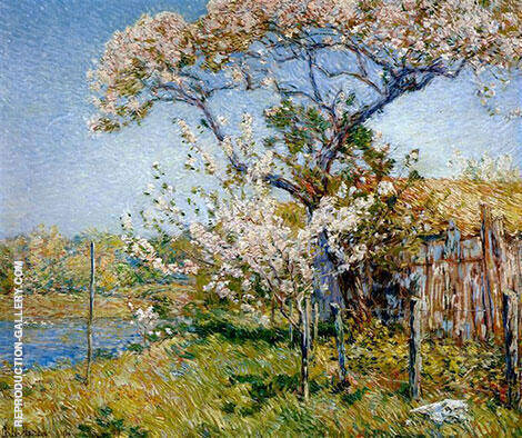 Apple Trees in Bloom Old Lyme 1904 Painting By Childe Hassam