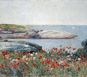 Poppies Isles of Shoals 1891 By Childe Hassam