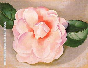 Pink Camellia 1935 By Georgia O'Keeffe