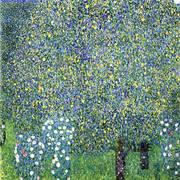 Roses under the Trees 1905 By Gustav Klimt