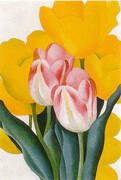Pink and Yellow Tulips 1925 By Georgia O'Keeffe