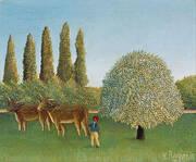 The Pasture 1910 By Henri Rousseau