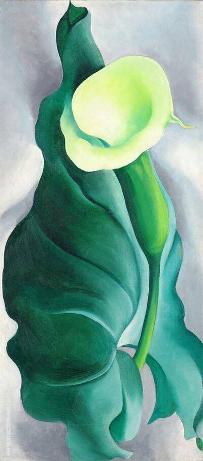 Calla Lily Yellow No 2 1927 By Georgia O'Keeffe - Oil ...