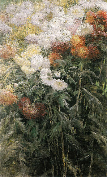 Clump of Chrysanthemums Garden at Petit Gennevilliers 1893 By Gustave Caillebotte - Oil Paintings & Art Reproductions - Reproduction Gallery