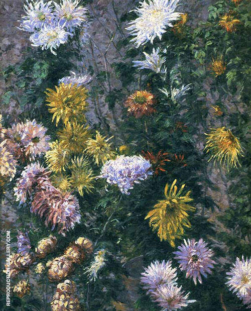 White and Yellow Chrysanthemums Garden at Petit Gennevilliers 1893 By Gustave Caillebotte