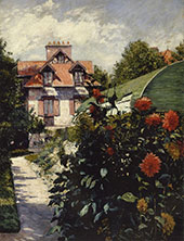 Dahlias the Garden at Petit Gennevilliers 1893 By Gustave Caillebotte