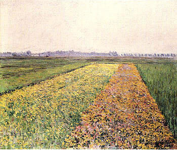 The Gennevilliers Plain Yellow Fields 1884 By Gustave Caillebotte - Oil Paintings & Art Reproductions - Reproduction Gallery