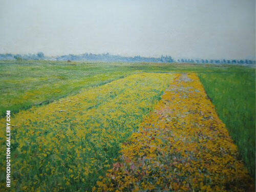 The Gennevilliers Plain Yellow Fields 1884 By Gustave Caillebotte Replica Paintings on Canvas - Reproduction Gallery