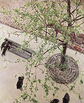 Boulevard Seen from Above c1880 By Gustave Caillebotte