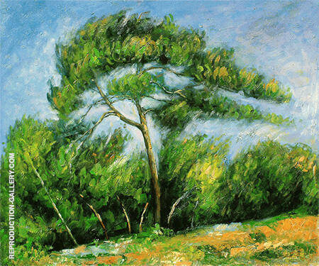 Great Pine 1890 By Paul Cezanne