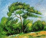 Great Pine 1890 By Paul Cezanne