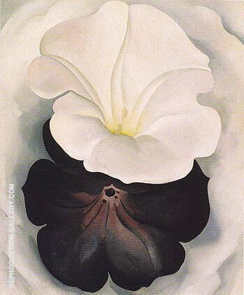 Black Petunia and White Morning Glory 1926 2 By Georgia O'Keeffe