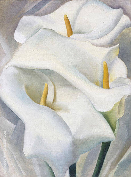 Calla Lilies 1924 459 By Georgia O'Keeffe - Oil Paintings & Art Reproductions - Reproduction Gallery