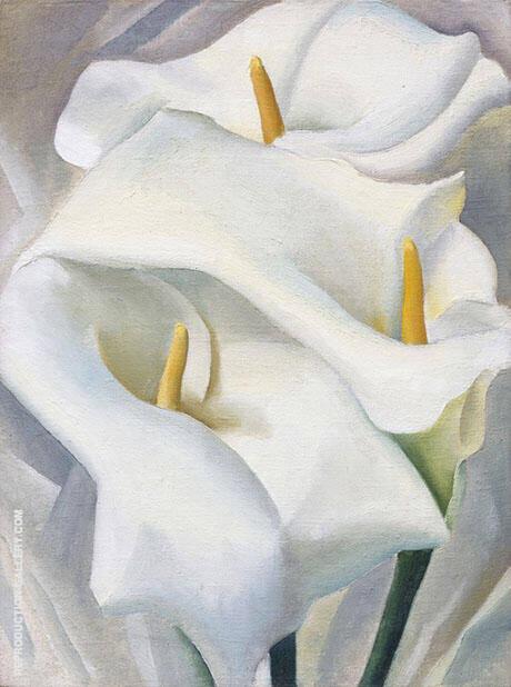 Calla Lilies 1924 459 By Georgia O'Keeffe