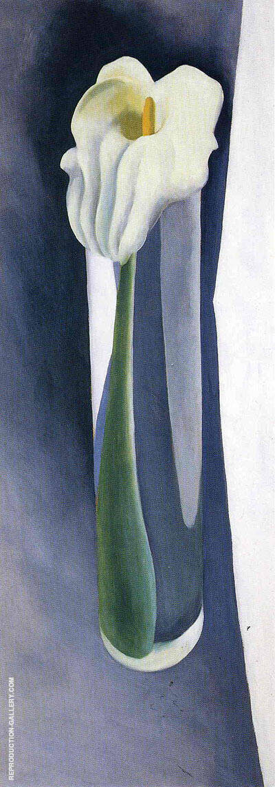 Calla Lily In Tall Glass No 2 1923 426 By Georgia O'Keeffe - Oil Paintings & Art Reproductions - Reproduction Gallery