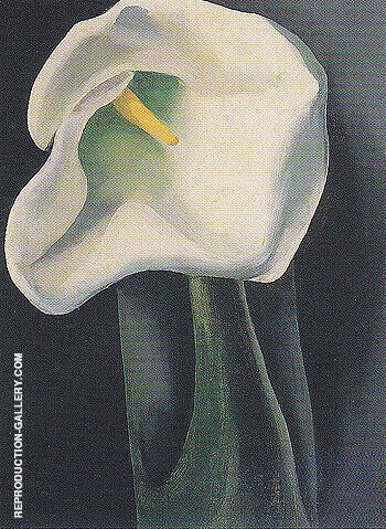 Calla Lily With Black 1923 Painting By Georgia O'Keeffe