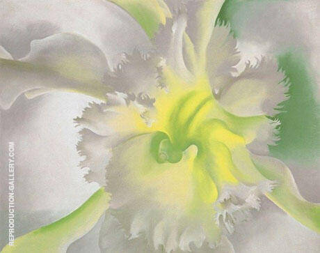 An Orchid 1941 By Georgia O'Keeffe - Oil Paintings & Art Reproductions - Reproduction Gallery