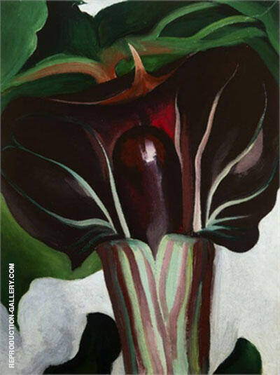 Jack In Pulpit 1930 No 1 By Georgia O'Keeffe - Oil Paintings & Art Reproductions - Reproduction Gallery