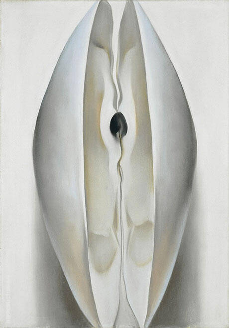 Open Clam Shell The Sea Shell 1926 By Georgia O'Keeffe - Oil Paintings & Art Reproductions - Reproduction Gallery