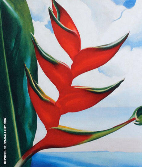 Crabs Claw Ginger Hawaii 1939 By Georgia O'Keeffe