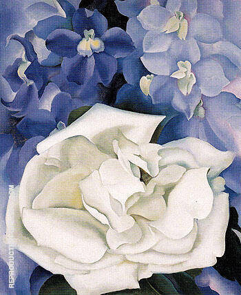 White Rose With LarkSpur 1927 No 1 By Georgia O'Keeffe