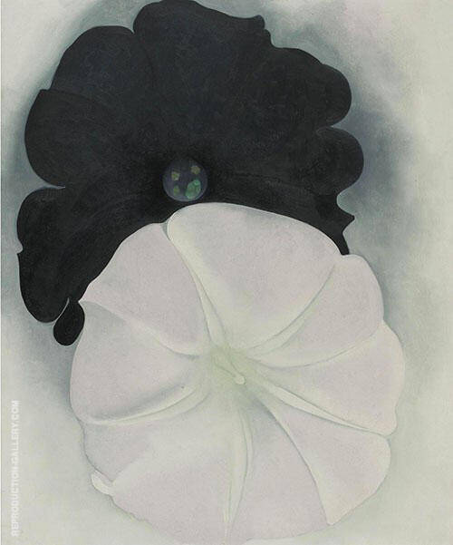 Black Petunia And White Morning Glory 1926 1 Painting By Georgia O'Keeffe