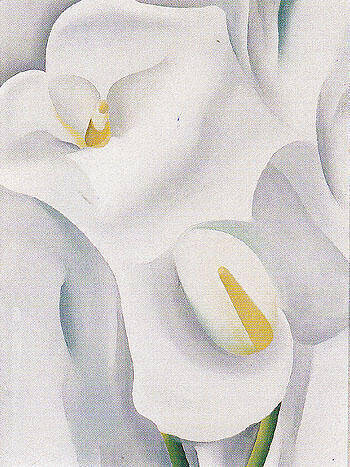 Calla Lilies 1930 712 By Georgia O'Keeffe Replica Paintings on Canvas - Reproduction Gallery