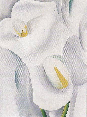 Calla Lilies 1930 712 By Georgia O'Keeffe