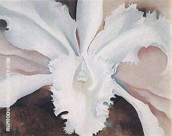 Narcissas Last Orchid 1941 By Georgia O'Keeffe - Oil Paintings & Art Reproductions - Reproduction Gallery