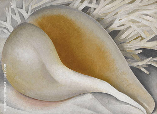 Shell 1937 IV By Georgia O'Keeffe Replica Paintings on Canvas - Reproduction Gallery