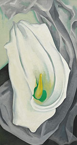White Calla Lily 1927 By Georgia O'Keeffe