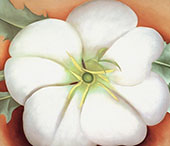 White Flower On Red Earth 1943 2 By Georgia O'Keeffe