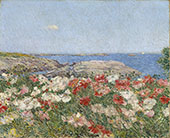 Poppies Isles of Shoals 1890 By Childe Hassam